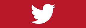 שגיא שטגמן בבטוויטר